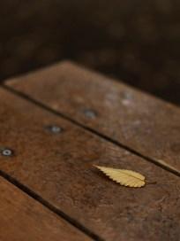 AG-autumn2017-small_9339469