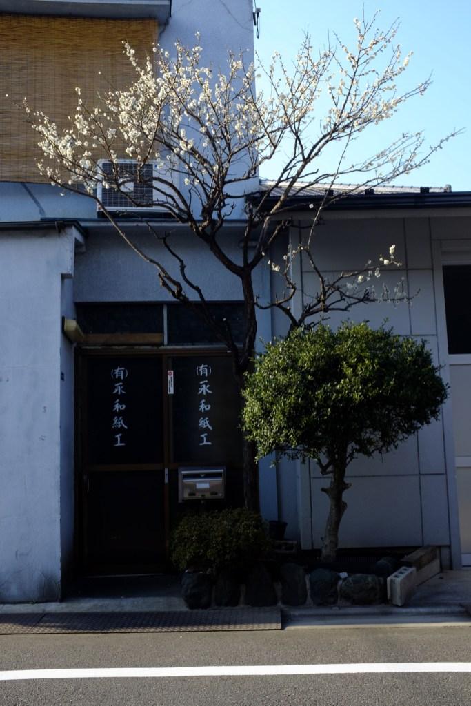 tokyo-photowalks-nethertokyo__DSF3949