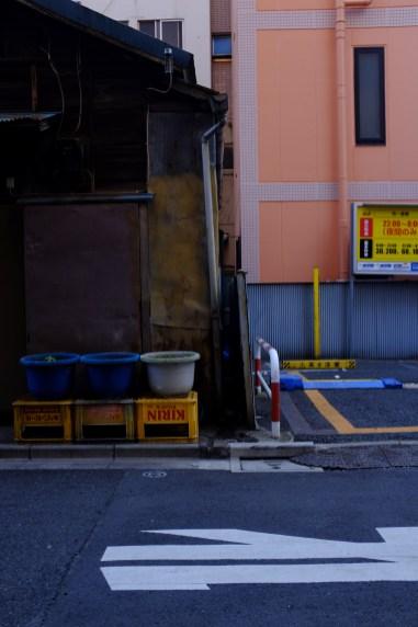 tokyo-photowalks-nethertokyo__DSF4014