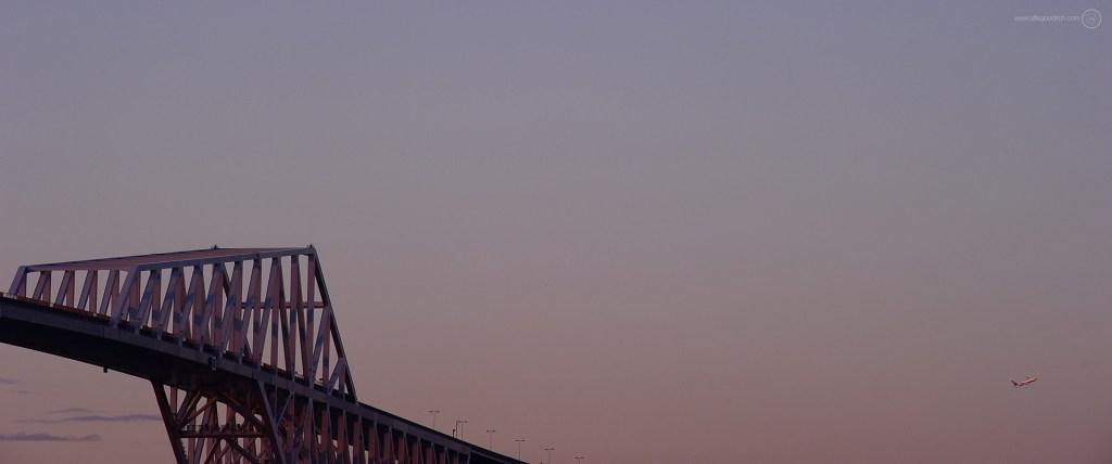 Tokyo Gate Bridge from Wakasu Park