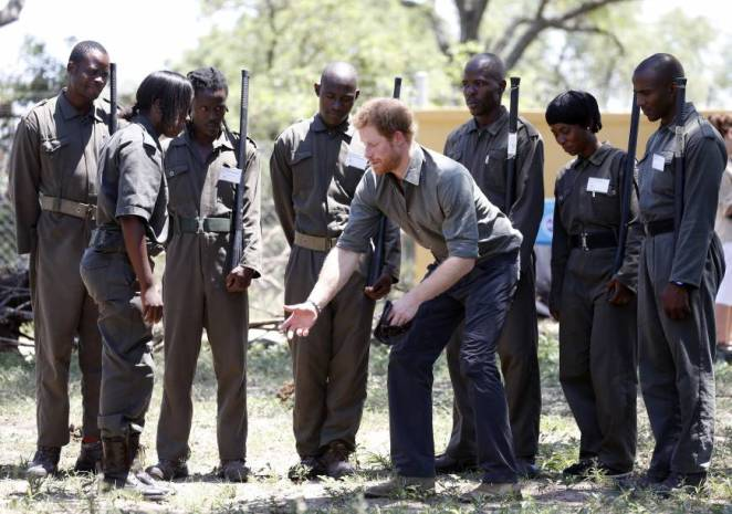 Image result for prince harry at african park