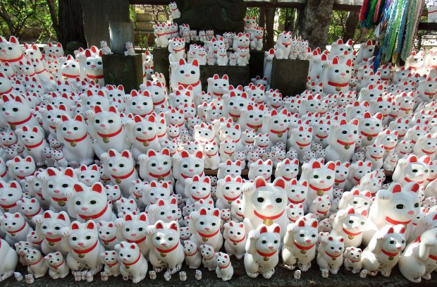 Image result for Gotokuji Temple