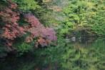 pond nearby Hibara-ko
