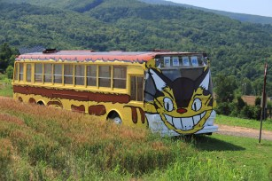 Tottoro bus in the wild