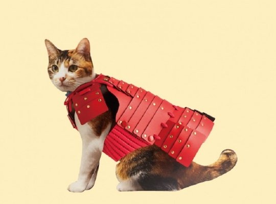 Samurai Pet Armor for Cats and Dogs