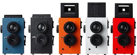 black-bird-fly-camera
