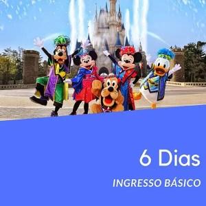 Ingresso Disney 6 Dias