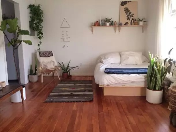 design-amazing-bed-bedroom-cool-girl-green-grunge-nature-plants-room