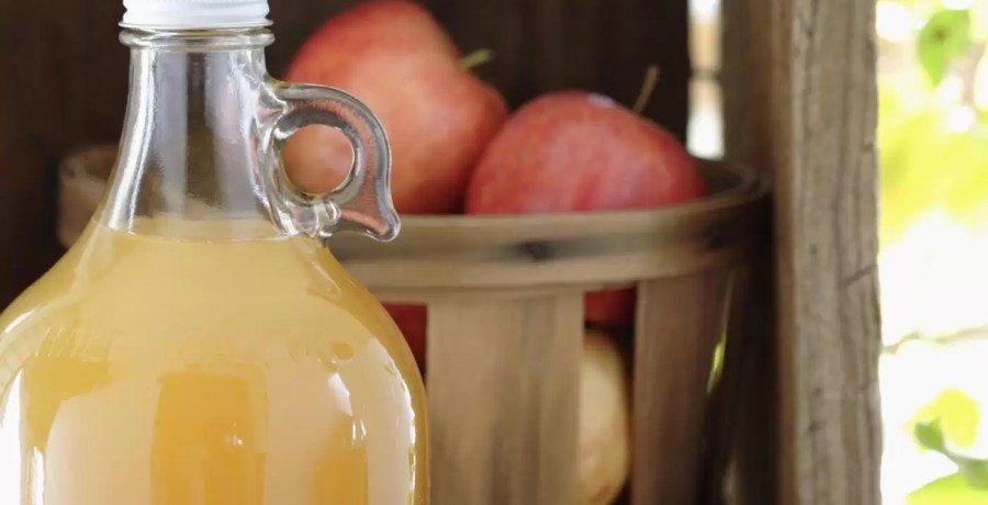 good-homemade-apple-cider-recipe_112eaac454b531f9