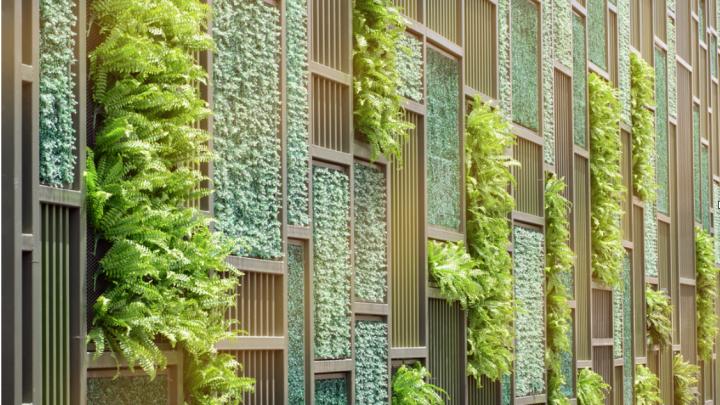 ahorro energetico con jardines verticales