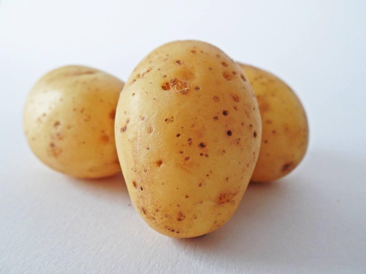 pomme de terre bienfaits et vertus
