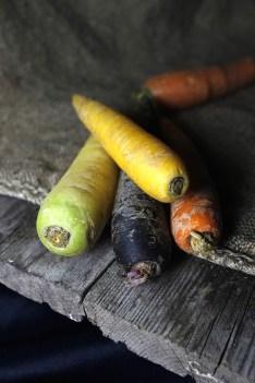 variété carotte couleurs
