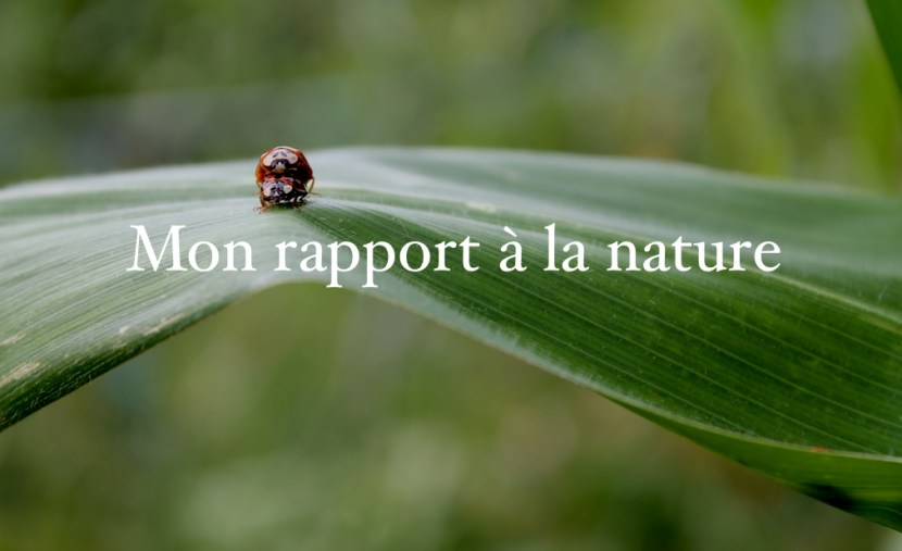 Mon rapport à la nature