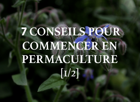 7 conseils permaculture commencer jardin 1