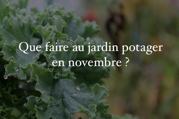 """Résultat de recherche d'images pour """"novembre au potager"""""""