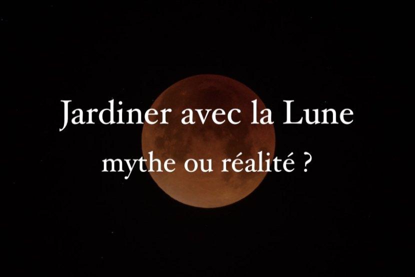 Jardiner avec la Lune mythe ou réalité ?