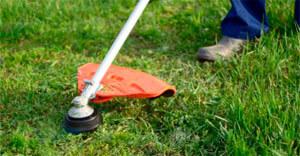 Limpieza y desbroce de jardines