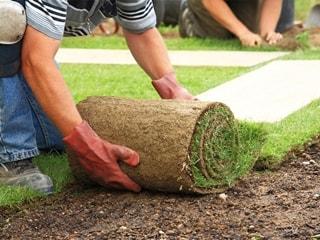 servicio de jardineria en castro urdiales