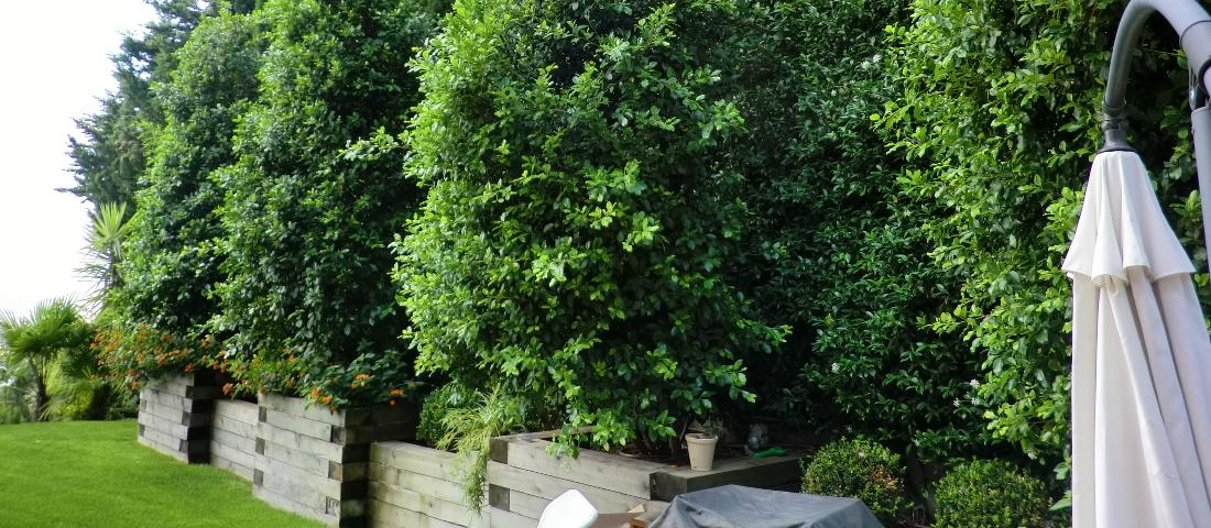 jardineras_de_madera_imagen_principal