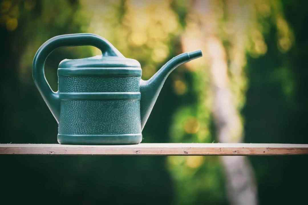 A watering can is essential to fertilize plants