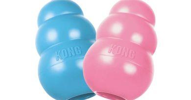 KONG PUPPY: jouet pour chiot spécial dent de lait