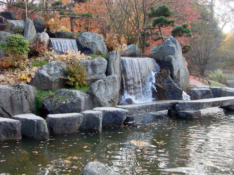 cascade japonaise photos de jardin