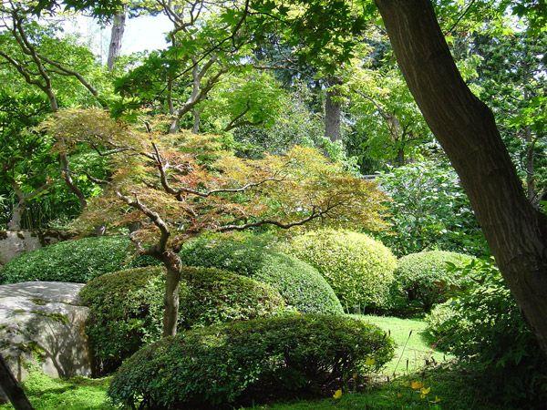 entretien jardin paysagiste