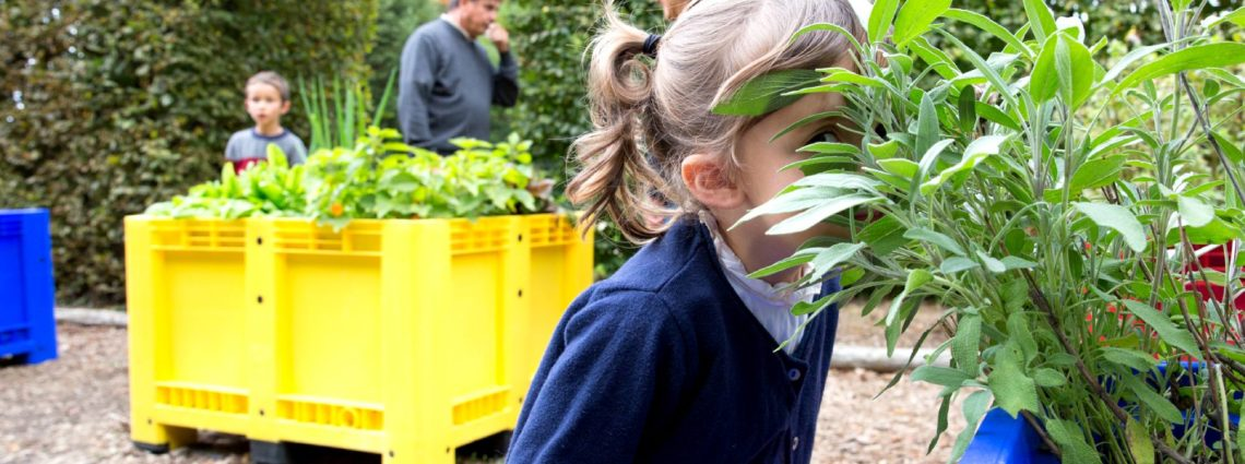 jardin sensoriel a breal sous monfort