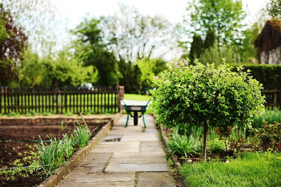Donnez un coup de jeune à votre jardin