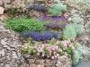 Corbeilles de la rocaille 13