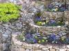 Corbeilles de la rocaille 18