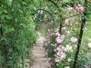 roseraie_tonnelle02