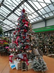 Sapin et décoration de Noël à la jardinerie Pradel Horticulture
