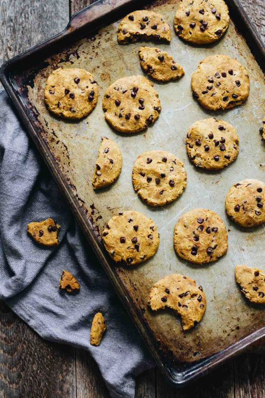 Gluten Free Pumpkin Chocolate Chip Cookies - so good! Also vegetarian and dairy free!
