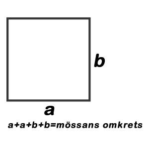 Omkrets kvadratmössa