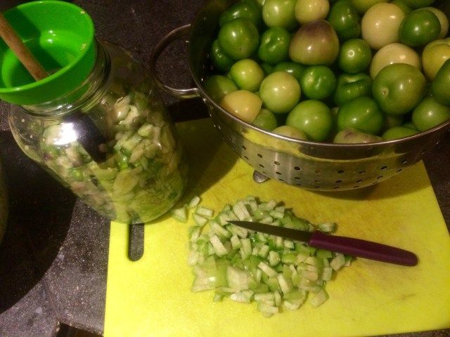 Tomatillo time!
