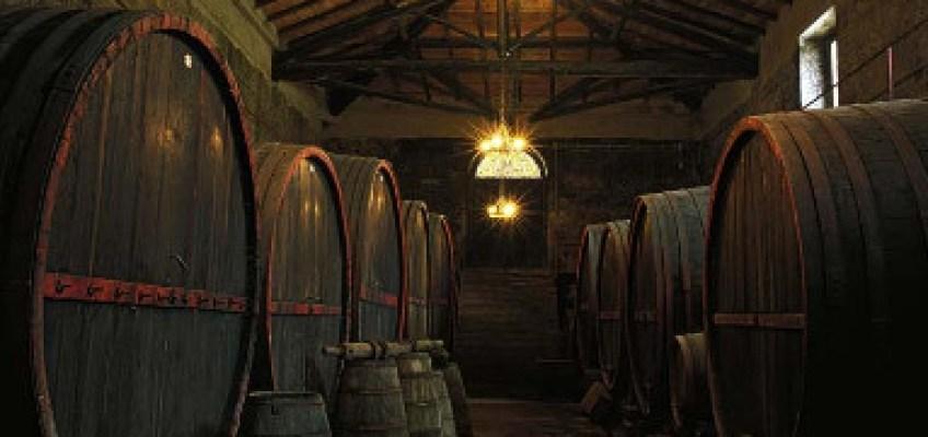Excursion Etna Wine Tasting