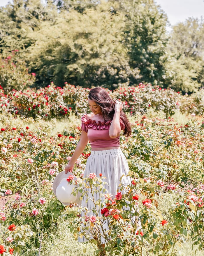 Exploring the Tyler Rose Garden