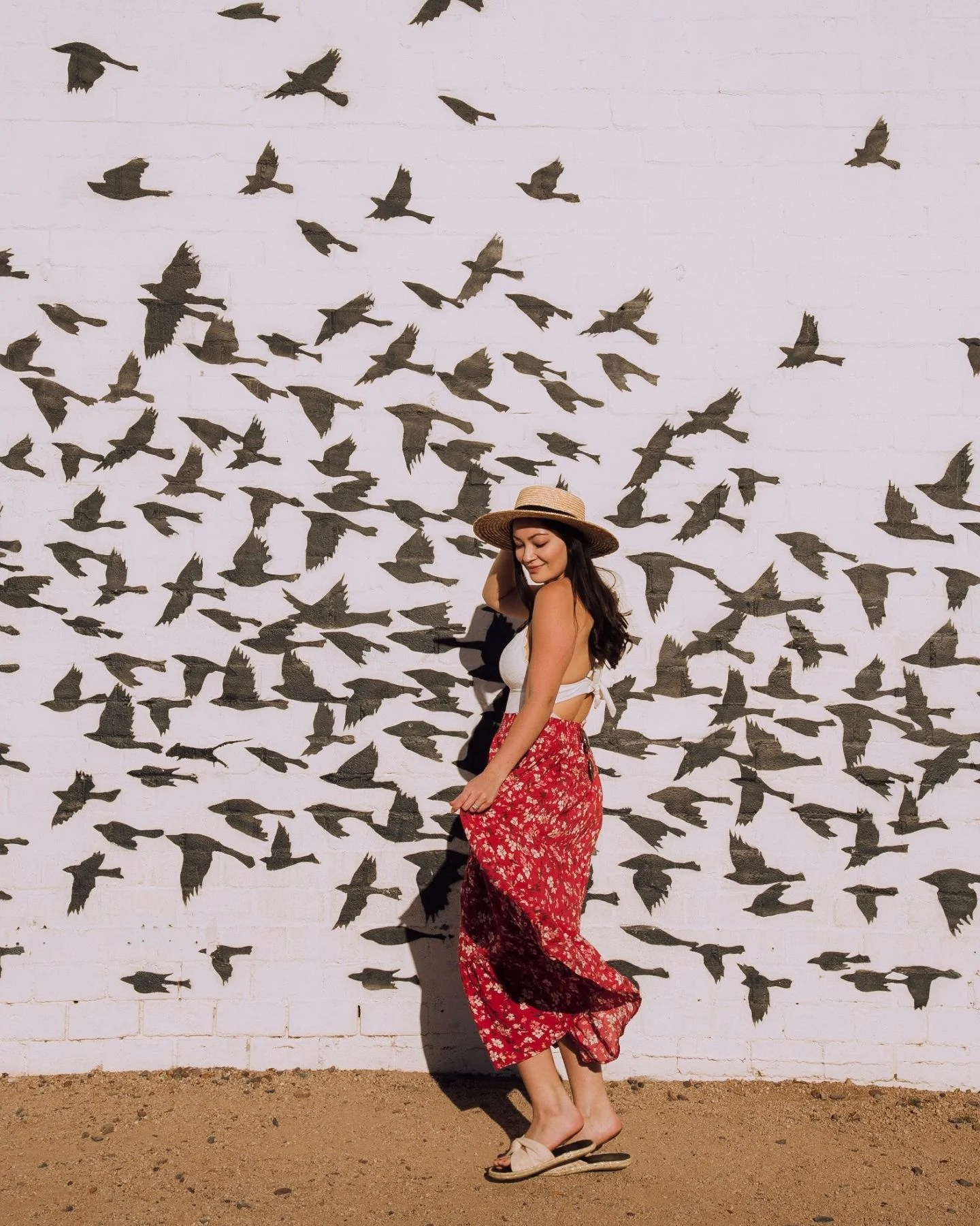 birds mural in phoenix az