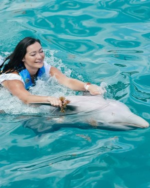 Swimming with Dolphins on Isla Mujeres: Is It Worth It?