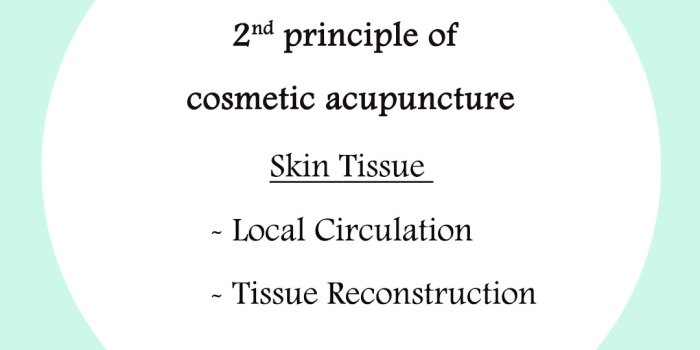 principle-of-cosmetic-acupunture-2