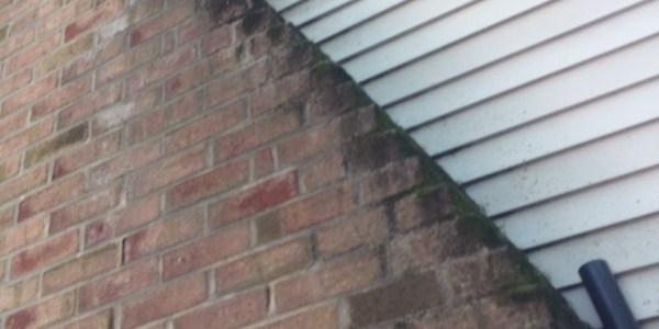 The Chimney Story- How Ridgway Chimney Service NJ ruined our Chimney