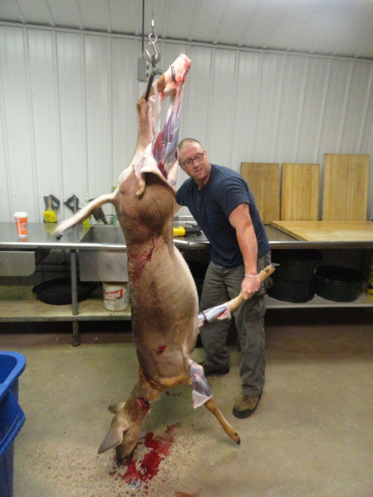 Hanging A Deer.  Is There A Right or Wrong Way?