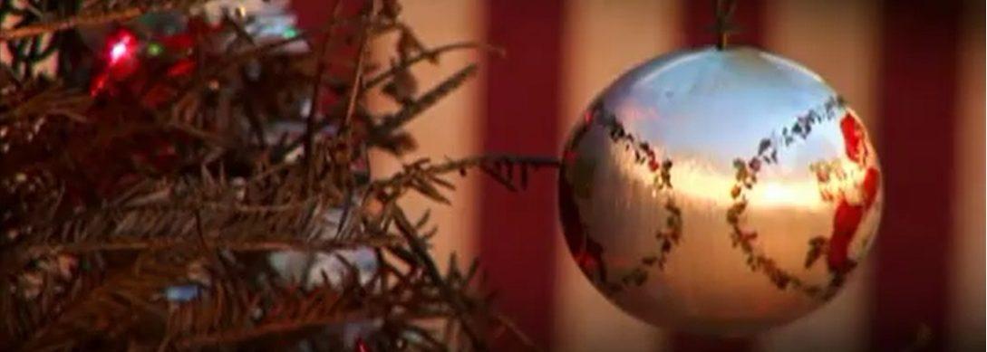 The 12 Crazy Days of Christmas