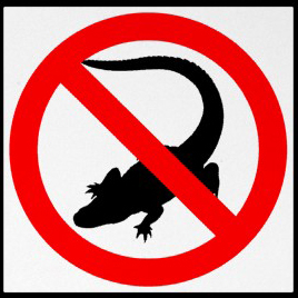 no_alligators_highway_sign_
