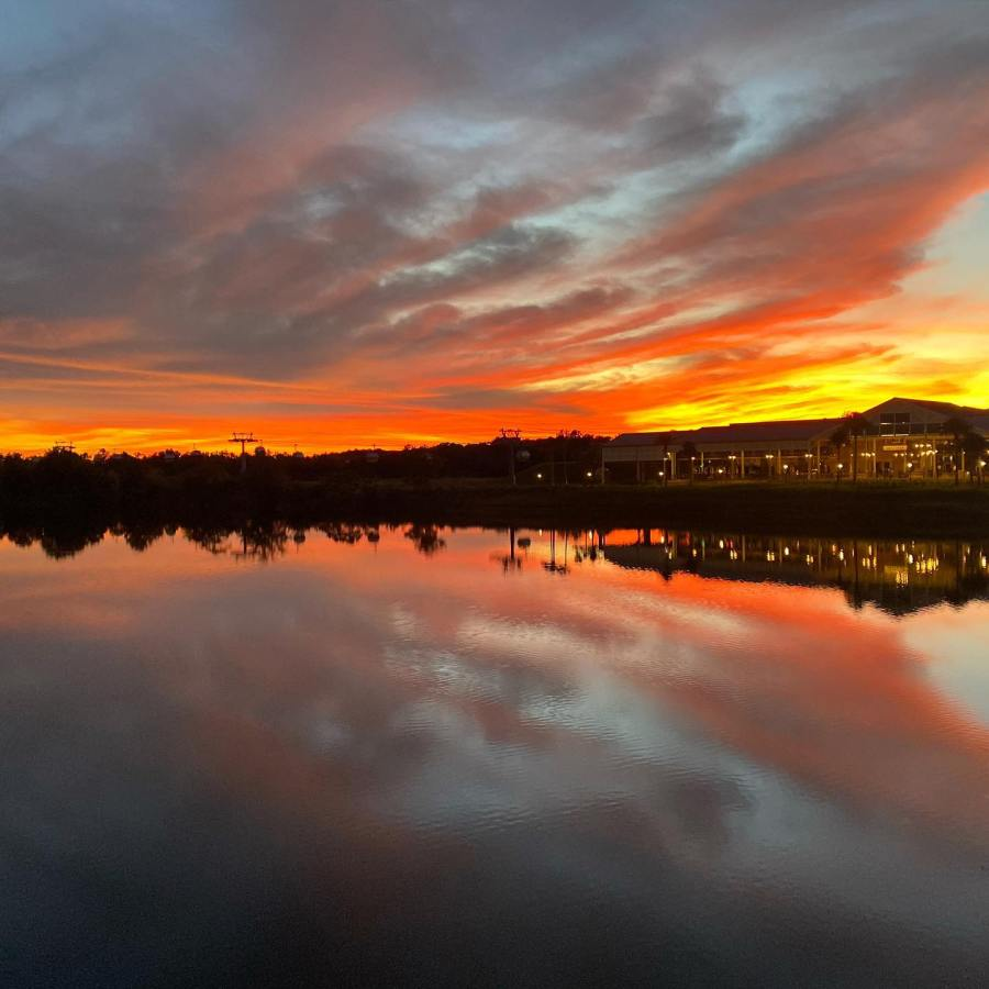 Disney Sunset