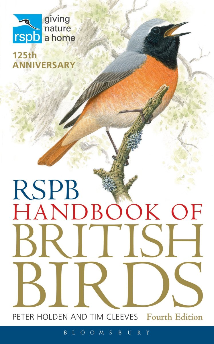 What we're reading: RSPB Pocket Guide to British Birds, Published in Oh Comely Issue 24