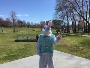 Easter 2018 - Easter Bunny