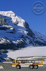 The Columbia Icefields in Jasper National Park.