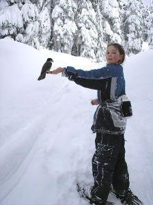 Snowshoe in Jasper